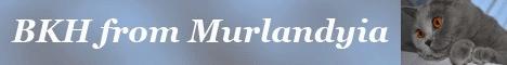 www.bkh-from-murlandyia.de